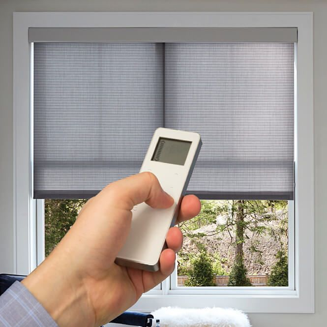 motorized roller blinds for windows
